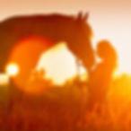 Horse-Woman-Sunset-e1550190911446.jpg