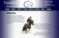 Equestrian Marketing, Website Creation, horse show marketing, horse event marketing, hunter pony, horse show photographer, horse show videographer, horse show photography, horse show videography