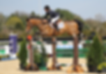 Photo Sponsored Grand Prix Jumper Rider Trainer Catch-Rides NJ NY PA Photography photographer videographer Princeton Show Jumping Best Horse Show photographer Equestrian Marketing Equine Sales NJ NY PA Ocala WEF Wellington Canine Sales Marketing Rider Sponsorship Opportunities