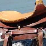 Restored Western Show Side Saddle