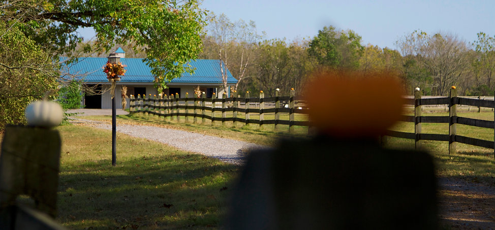 Barn and Pumpkins.jpg