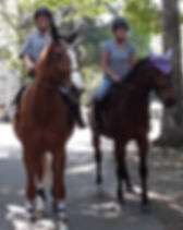porter side saddle with group trail ride