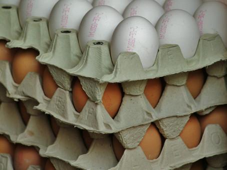 Mercado favorável para ovos