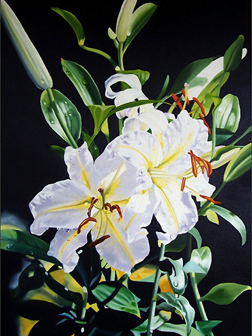 Exotic Lilies