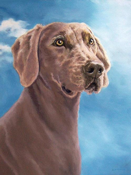 Custom Pet Portrait (Head & Shoulders)