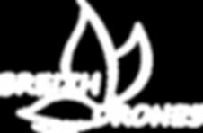 Logo_Ailes_+_nom_police_segoe_print_regu