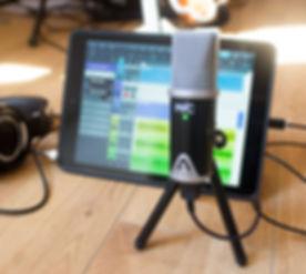 Apogee-Mic-2.jpg