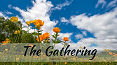 The Gathering Spring 2021-2 800px.png