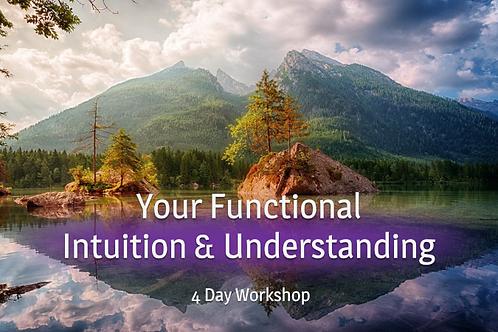 Your Functional Intuition & Understanding