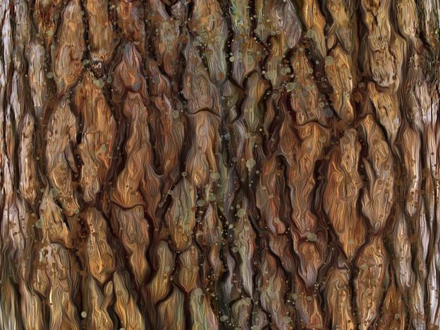 Digital Drawing of Bark