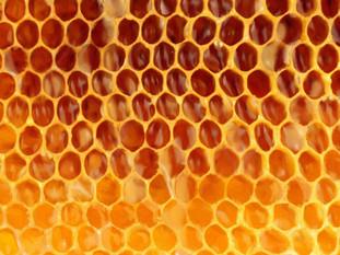 Digital Drawing of Honeycomb