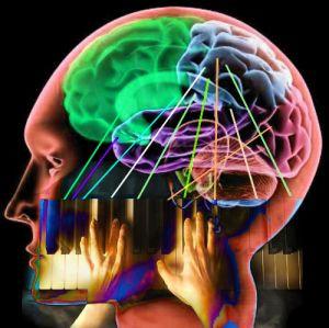 ¿Qué es la Neurofonoaudiología?