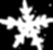snowflake-10.png