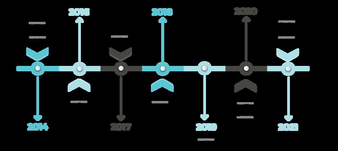 FDP timeline-01.png