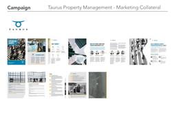 Campaign_Taurus