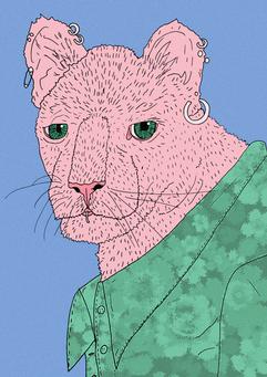 222. Pink Panter