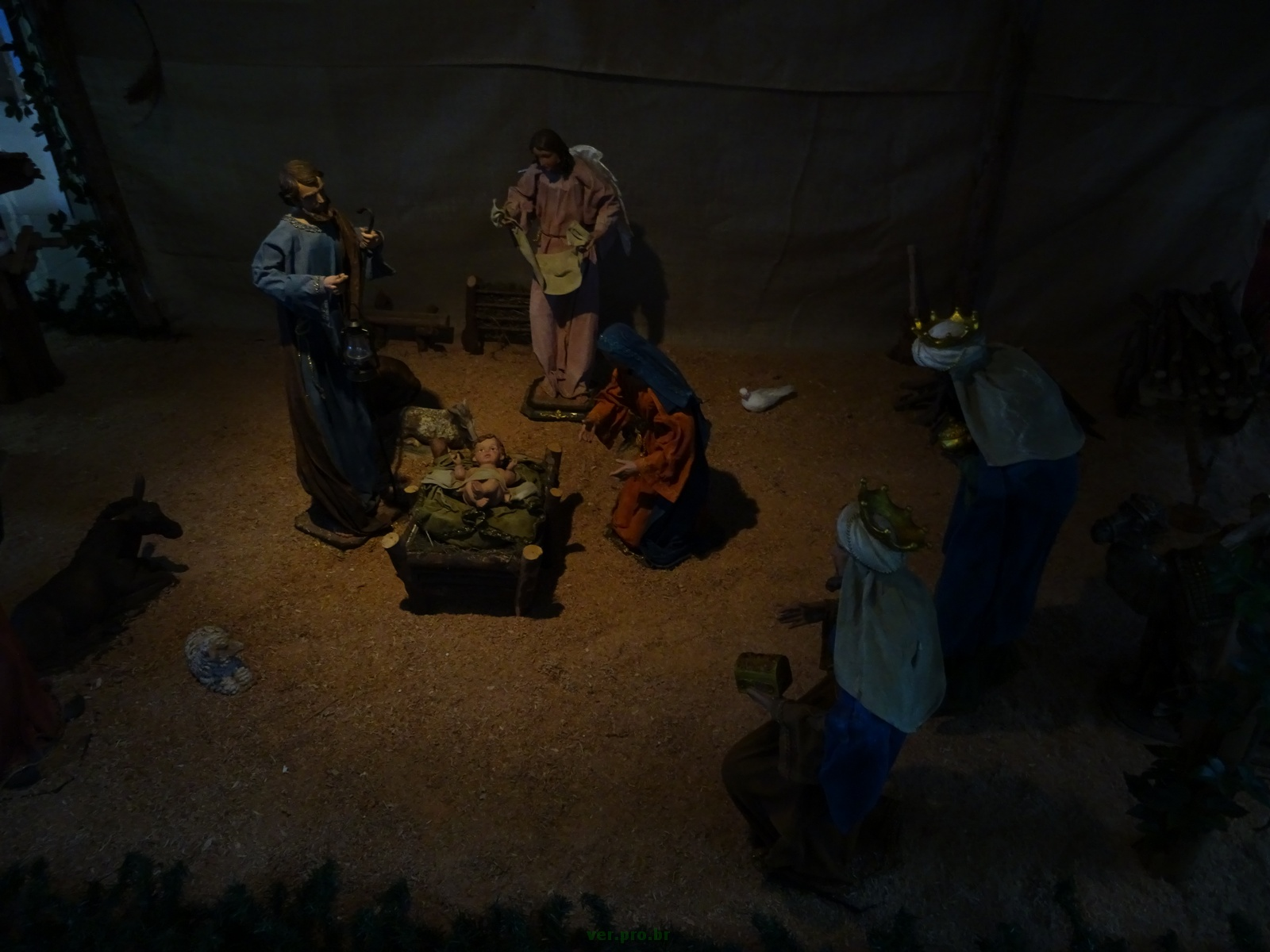 prespeio25-12 (33)