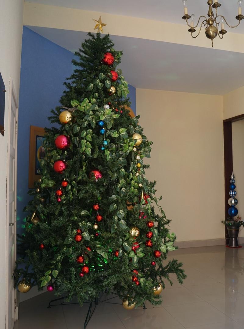 Árvore de Natal 2017