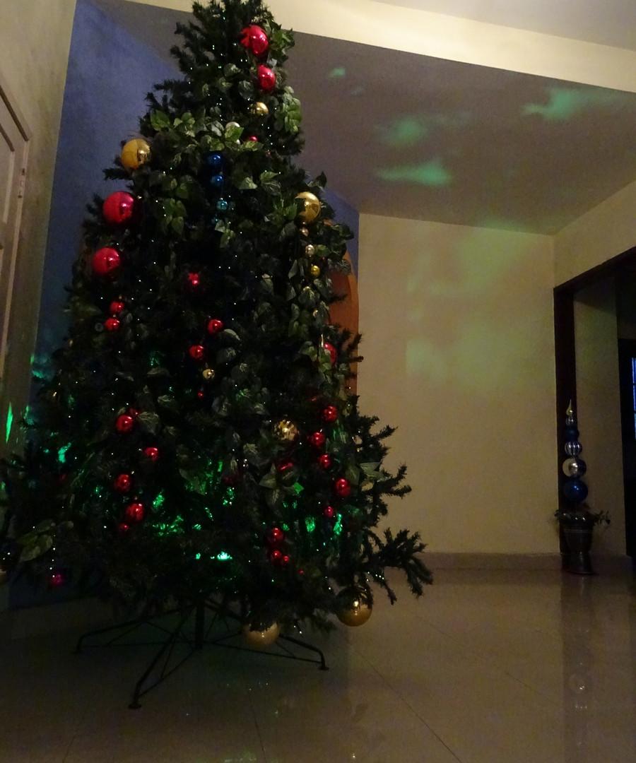 Arvore de Natal 2017