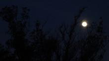 Lua pendurada