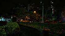 Jardim da igreja, a noite