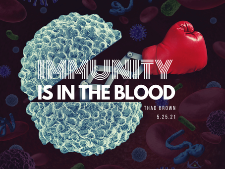 Immunity is in the Blood