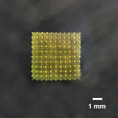 Tissue Chip - RP Edit v3 copy.jpg