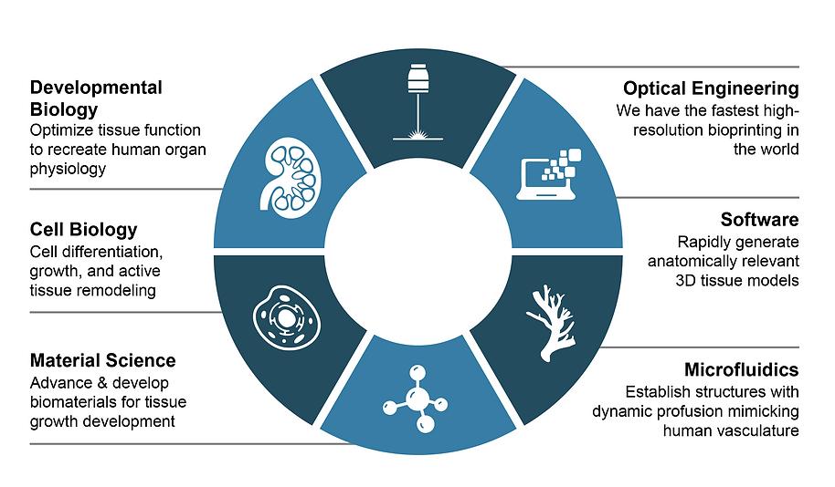 Prellis Multidisciplinary Approach.png