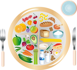 my-plate-5336211.png