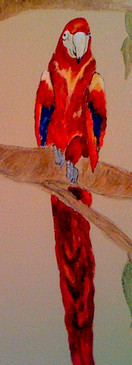 Parot-bird mural