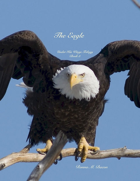 The Eagle cover.jpg