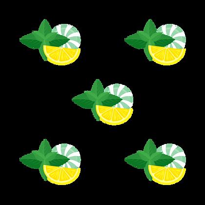 mint lemon logo.png
