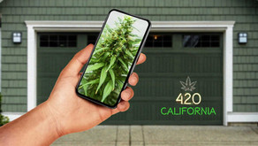 Automatic grow closets for your garage