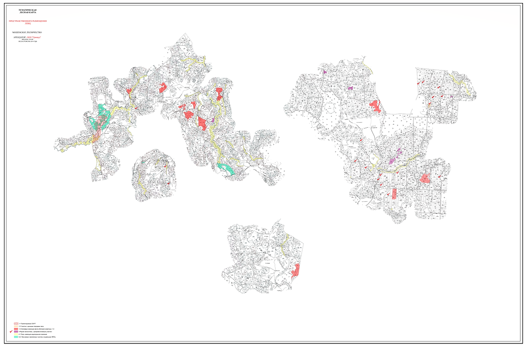 Карта ЛВПЦ арендуемого лесного участка О