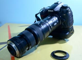 MACROfotografia: lente macro, lente invertida, tubo extensor... quão próximo?