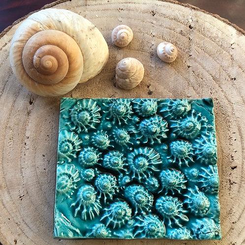 Saboneteira cerâmica/ ceramic trinket/ soap dish