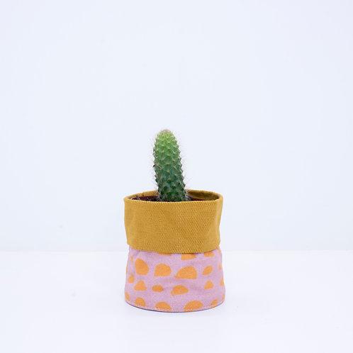 WS Pink Pebbles   Mustard