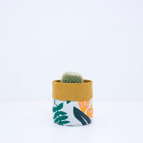 PLANTER   Leafy Mustard   Mini