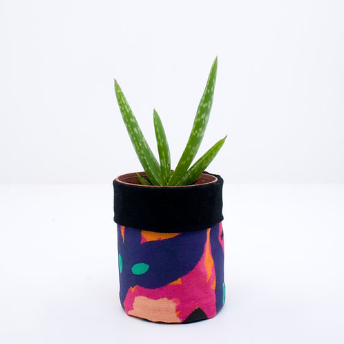 PLANTER | Tropical | Mini