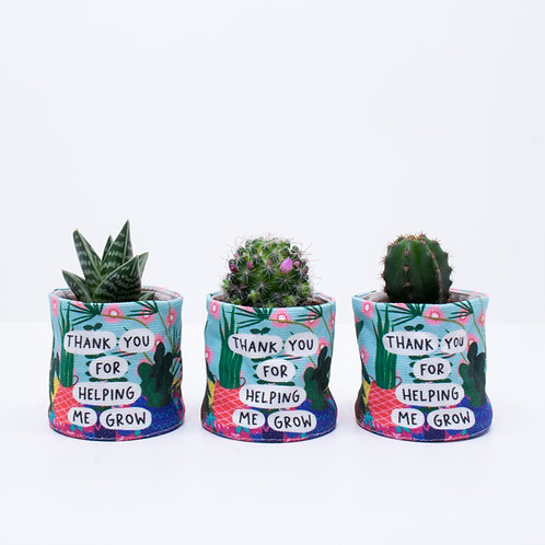 Thank You Mini Planters | 3 Pack