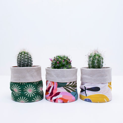 Classic Mini Planters | 3 Pack