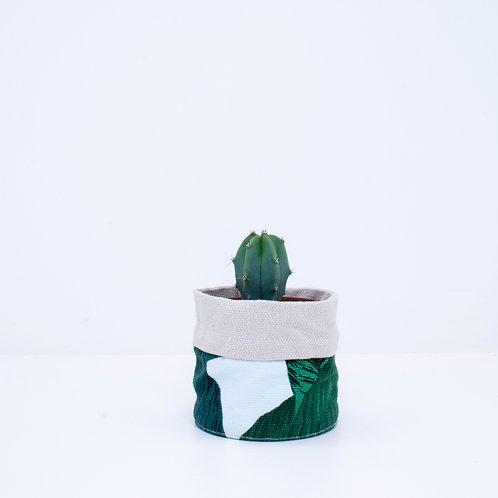 PLANTER | Banana Palm | Mini