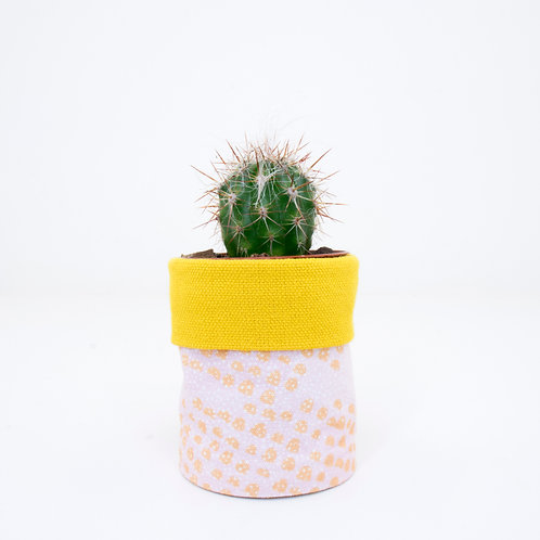 PLANTER | Sunset Sprinkle Yellow | Mini