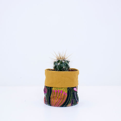 PLANTER | Banksia Mustard | Mini