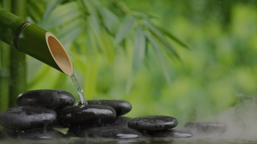 Bamboo Waters