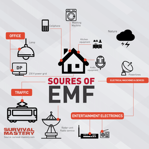 EMFs: How to Minimize the Damage they Cause