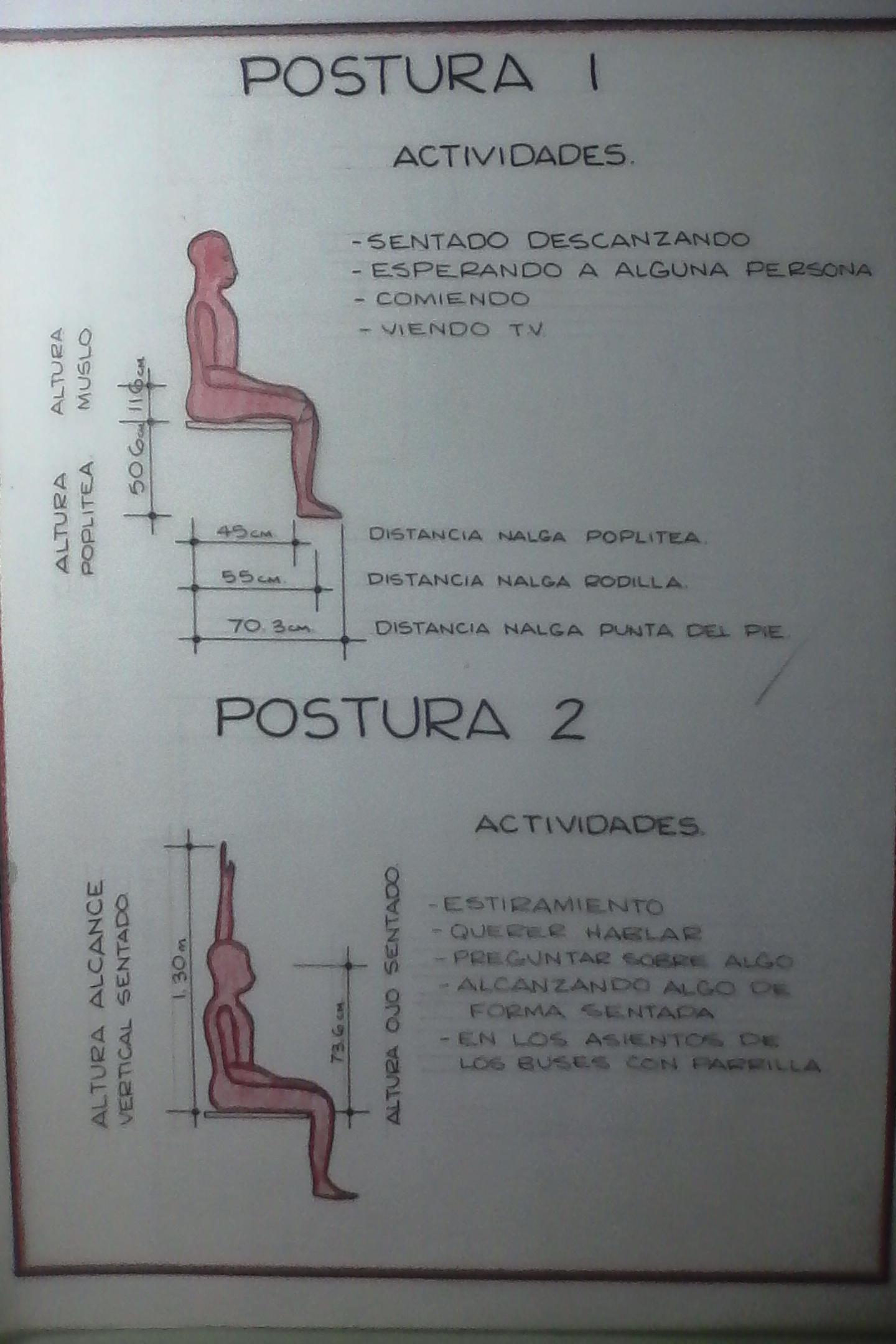 imagenes de antropometria estatica