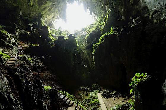 Bau- Fairy cave.png