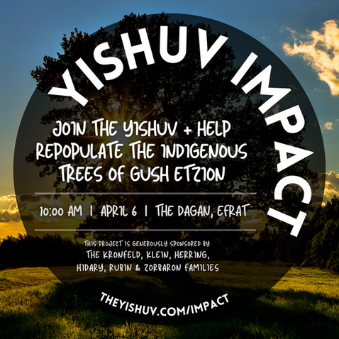 TheYishuv_Trees_MApril 6 2018.png