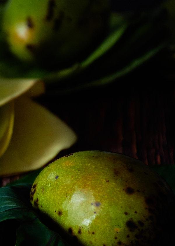 mangue2`.jpg